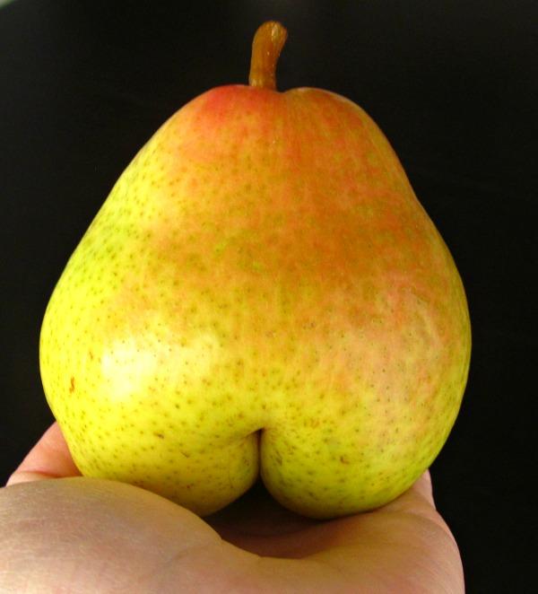 Pear Buns, bum, fanny, tush, butt