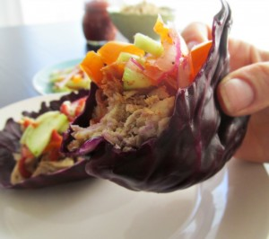 Red Cabbage Leaves stuffed to the brim with slow cooker pulled pork and topped with quick pickled cucumbers and spicy buffalo ketchup