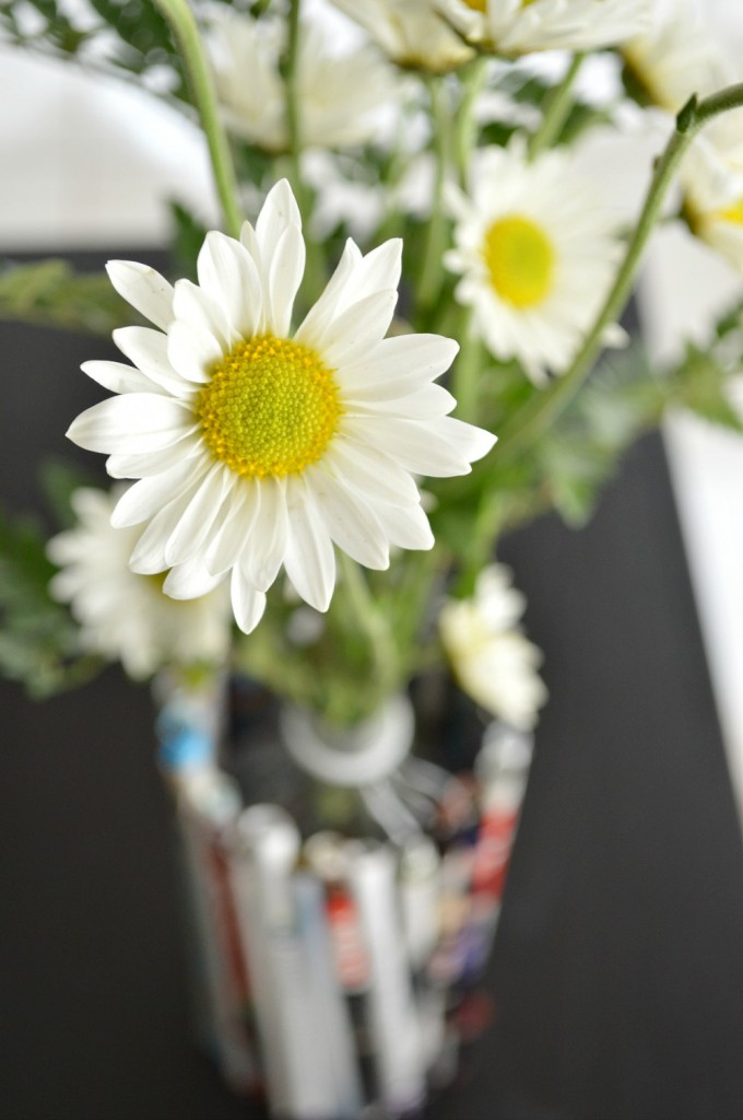 Daisy in recyclable vase